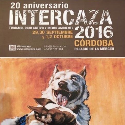 intercaza16